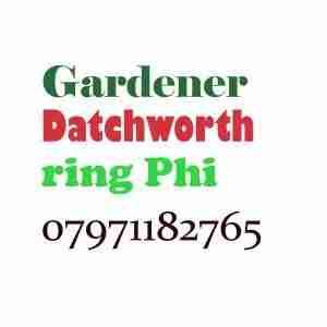 Gardener Datchworth