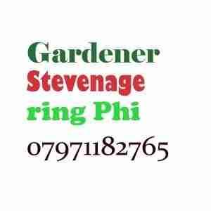 Gardener Stevenage