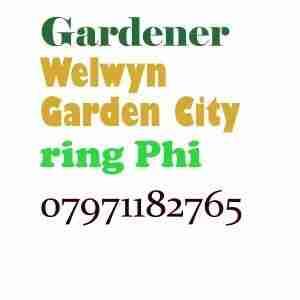 Gardener Welwyn Garden City